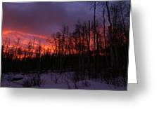 Winter's Fire Greeting Card