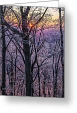 Winter's Light Greeting Card
