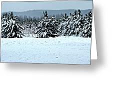 Winter's Love  Greeting Card