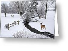 Winter's Respite Greeting Card