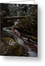 Winters Stream Flow Greeting Card