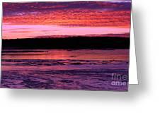Winter's Sunset Greeting Card