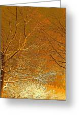 Winters Touch 2 Greeting Card