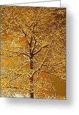 Winters Touch Greeting Card