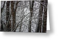 Wintery Day Greeting Card