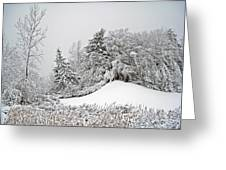 Wintery Fun Greeting Card