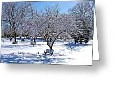 Wintry Day At The Park Greeting Card