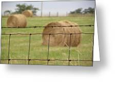 Wire And Hay Greeting Card by Jewels Blake Hamrick