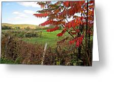 Wire Fenced Field Greeting Card