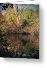Wisconsin Beauty Greeting Card