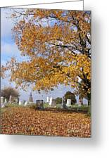 Wisconsin Boneyard 2 Greeting Card