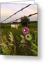 Wisconsin Evening Greeting Card