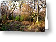 Wisconsin Scenic View Greeting Card