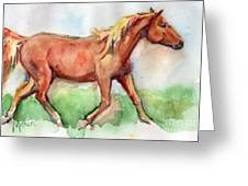 Horse Painted In Watercolor Wisdom Greeting Card