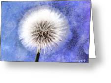 Wish A Little Wish Greeting Card