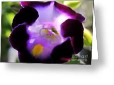 Wishbone Flower Greeting Card