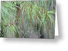 Wispy Winter Raindrops Greeting Card