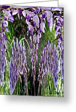 Wisteria Abstract Greeting Card