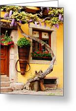 Wisteria And Yellow Wall In Alsace France Greeting Card