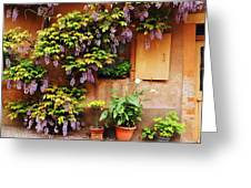 Wisteria On Home In Zellenberg France Greeting Card