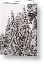 Wnter Snow At Shaver Lake Greeting Card