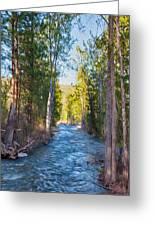 Wolf Creek Flowing Downstream  Greeting Card by Omaste Witkowski