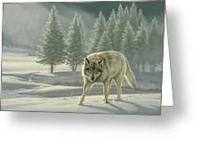 Wolf In Fog    Greeting Card