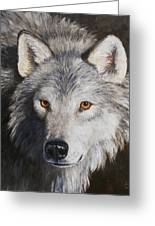 Wolf Portrait Greeting Card by Crista Forest