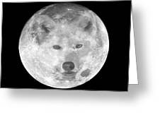 Wolf's Moon Greeting Card