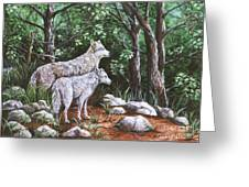 Wolves In South Dakota Greeting Card