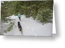 Woman And Dog Walking In Forest Greeting Card