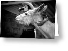 Woman And Donkey Black And White Greeting Card