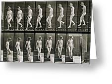 Woman Descending Steps Greeting Card by Eadweard Muybridge