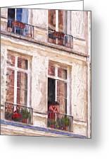 Woman In A Paris Window Greeting Card