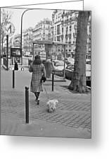 Woman In Paris Walking Dog Greeting Card