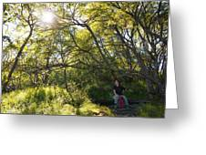 Woman Sitting On Bench - Bright Green Trees Sun Is Shining Greeting Card