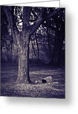 Woman Under A Tree Greeting Card