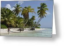 Woman Walking By Coconuts Trees On A Pristine Beach Greeting Card