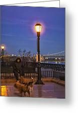 Woman With Her Dogs Greeting Card