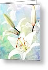 Wonderful Lilies Greeting Card