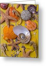 Wonderful Sea Life Greeting Card