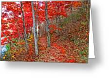 Wonders Of Autumn  Greeting Card