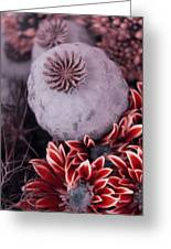 Wonderworld Of Flowers Greeting Card