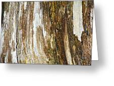 Wood Abstract Greeting Card