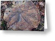 Wood Design Greeting Card