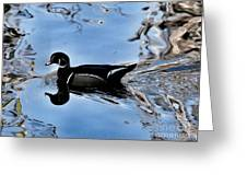 Wood Duck In Motion Greeting Card