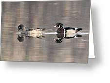 Wood Duck Pair Kettles Greeting Card