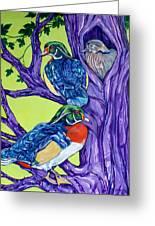 Wood Duck Tree Greeting Card