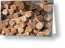Wood Logs Greeting Card
