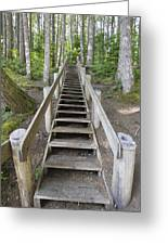 Wood Staircase In Hiking Trail Greeting Card